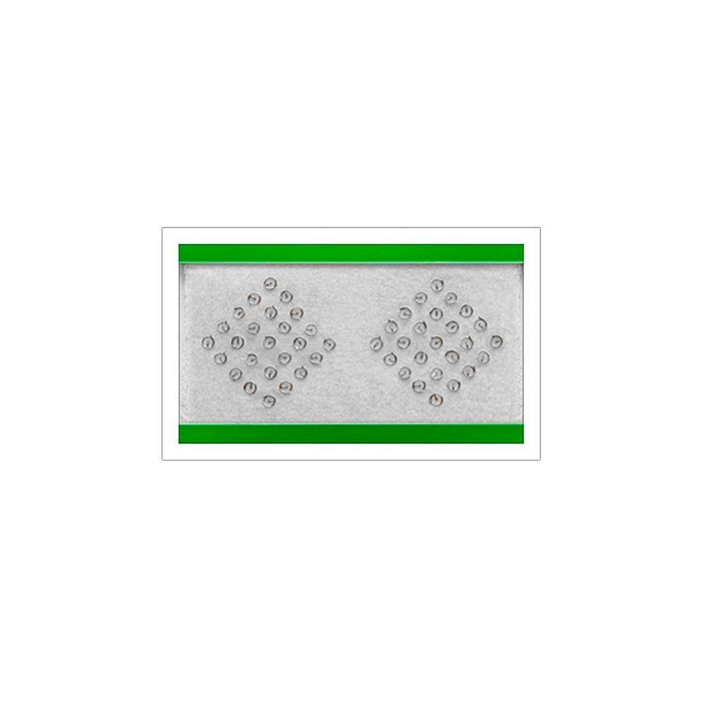 Agulha Auricular sem Micropore 50 unidades - Complementar