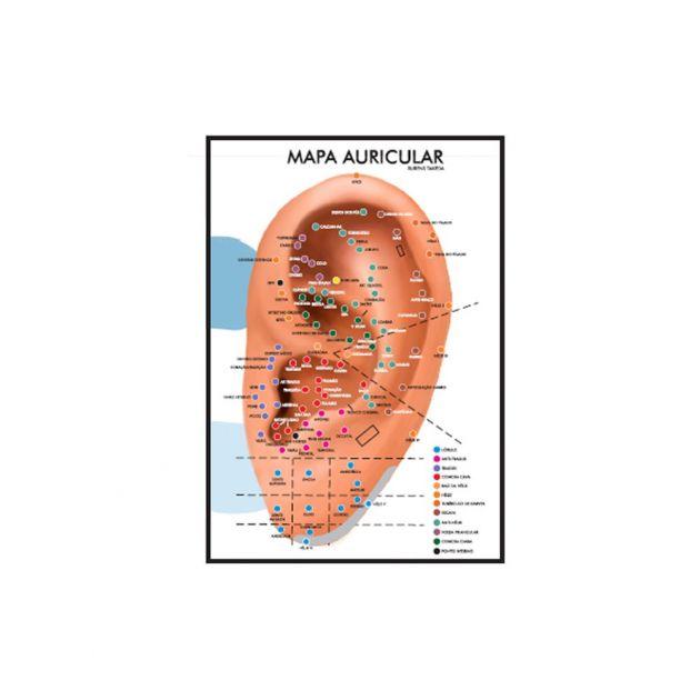 Mapa Auricular - Rubens Takeda